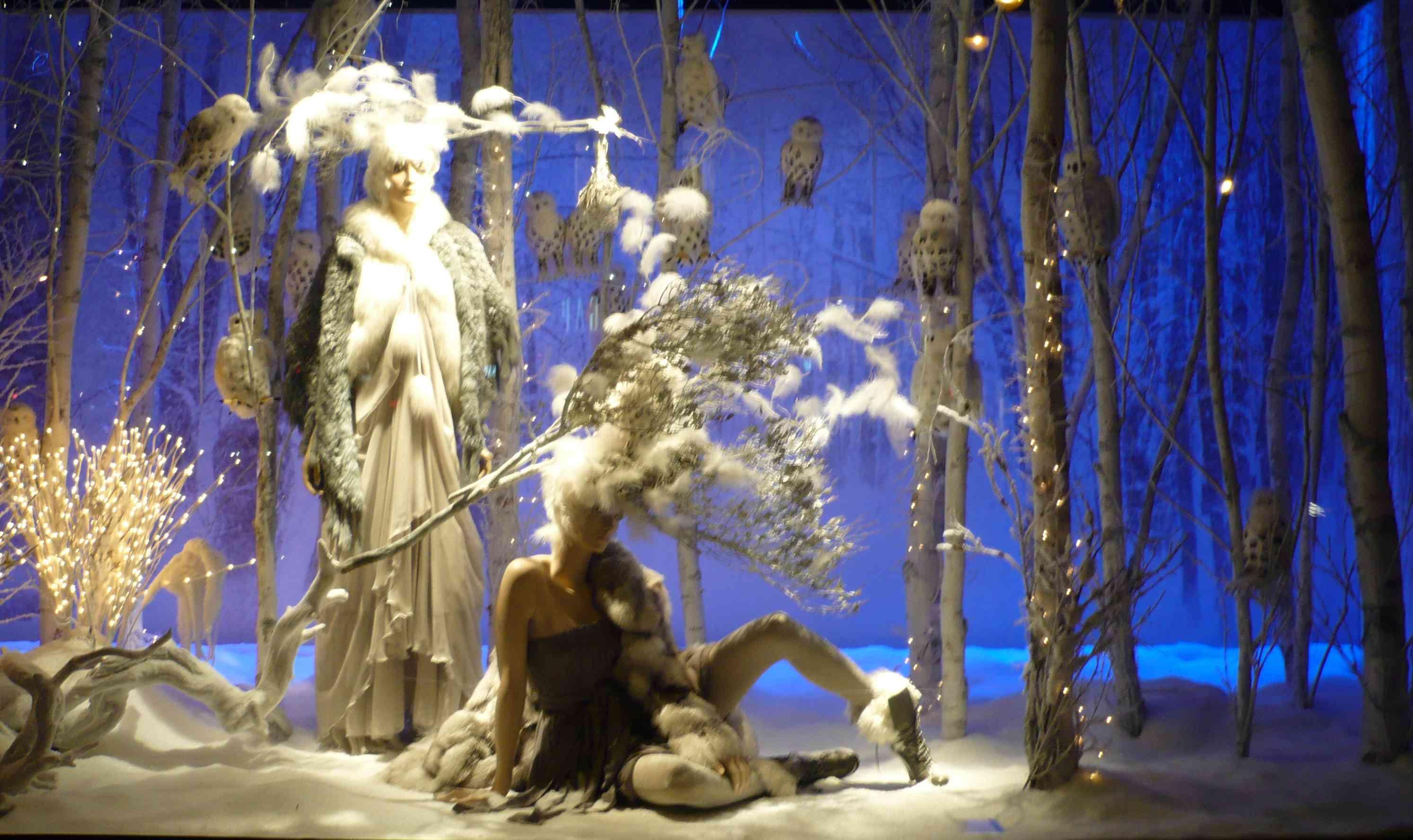 Ma traversee du miroir 2010 janvier 21 for Traversee du miroir